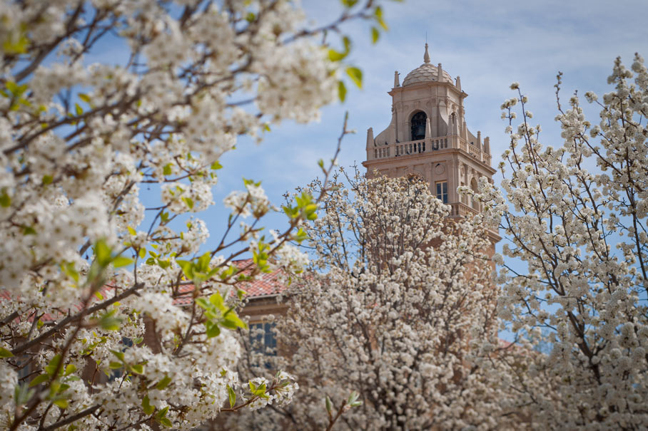 Texas Tech University Administration Building bell tower