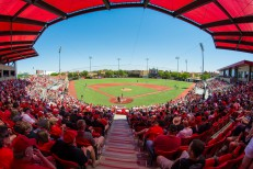 View from the grandstand at Rip Griffin Park